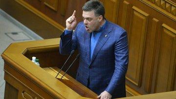 Лидер оппозиционной партии Свобода Олег Тягнибок. Архивное фото