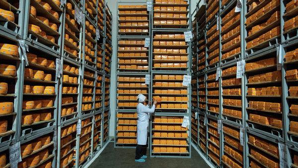 Головы сыра на складе предприятия в Черниговской области Украины. Архивное фото