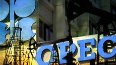 Баррель нефти ОПЕК 24 февраля подорожал на 4,8% - до 111,01 доллара