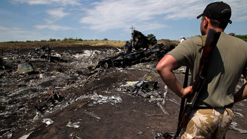 Боец народного ополчения на месте крушения самолета Boeing 777 авиакомпании Malaysia Airlines на Украине. Архивное фото