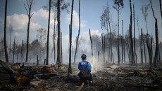 Сотрудник пожарной охраны на месте лесных пожаров в Тверской области