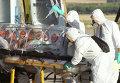 Госпитализация зараженного вирусом Эбола в Испании