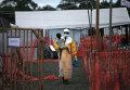 """Доктор из организации """"Врачи без границ"""" несет на руках ребенка с подозрением на вирус Эбола"""
