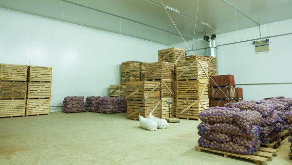 Хранение овощей на складе, архивное фото