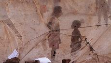 Дети видны через москитную сетку. Окраина Лусаки, Замбия. Архивное фото