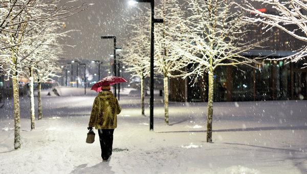 Женщина с зонтом идет по парку Музеон во время снегопада в Москве. Архивное фото