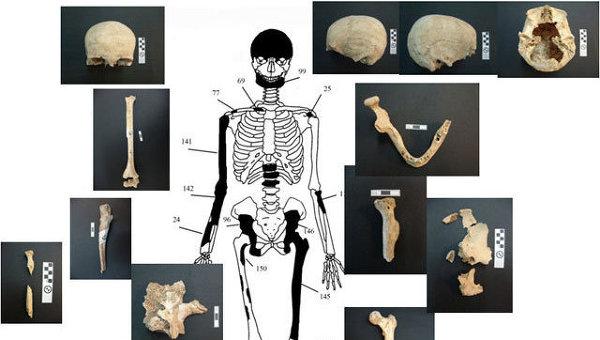 Останки, обнаруженные учеными в древнем захоронении в Амфиполе