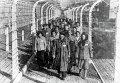 Заключенные в концентрационном лагере Освенцим