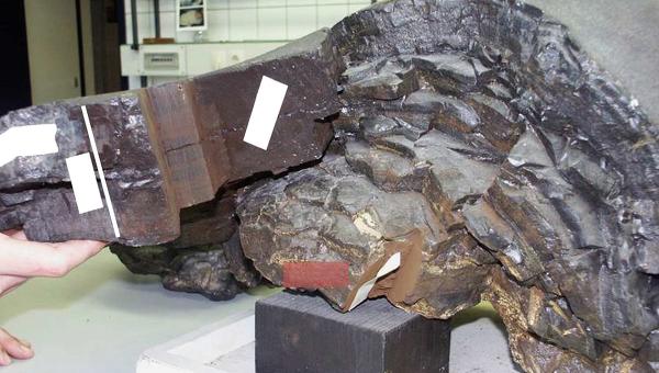 Фрагмент земной коры со дна Тихого океана, в котором содержится космическая пыль
