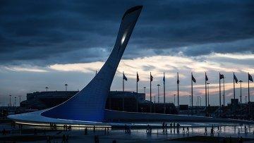 Чаша Олимпийского огня во время открытия скульптурной композиции Стена чемпионов Игр в Сочи. Архивное фото