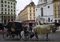 Повозка, запряженная лошадьми, на площади перед дворцовым комплексом Хофбургов в Вене