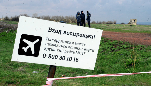 Посол Нидерландов: усилия по созданию трибунала по MH17 прекращены
