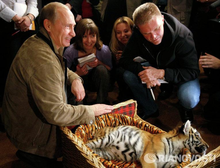 Владимир Путин познакомил журналистов с подаренным ему тигренком