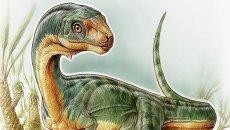 Так художник представил себе чилизавра – травоядного родича тираннозавров