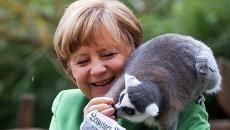 Канцлер Германии Ангела Меркель кормит лемура