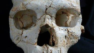 Восстановленный череп жертвы первого преступления в Европе из «ямы костей» в Испании