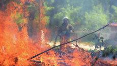 Сотрудник МЧС тушит пожар. Архивное фото