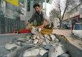 Торговец рыбой в Тегеране