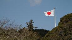 Флаг Японии. Архивное фото