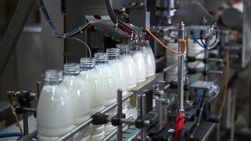 Молочный комбинат. Архивное фото
