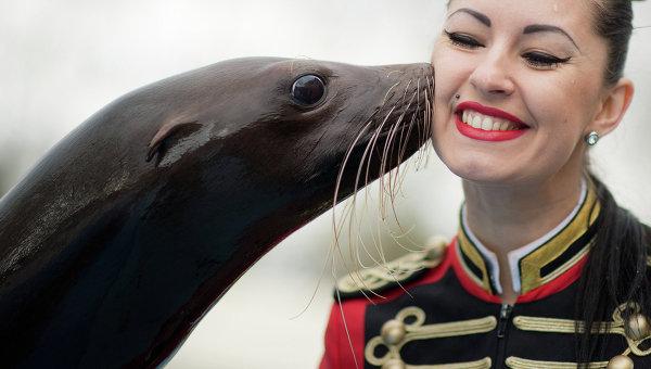 Морской котик целует дрессировщика во время фотосессии