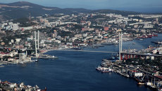 Вид на вантовый мост через бухту Золотой Рог во Владивостоке