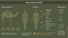 Ближневосточный респираторный синдром (MERS)