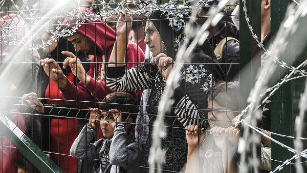 Мигранты за ограждением на границе Венгрии и Сербии. Архивное фото