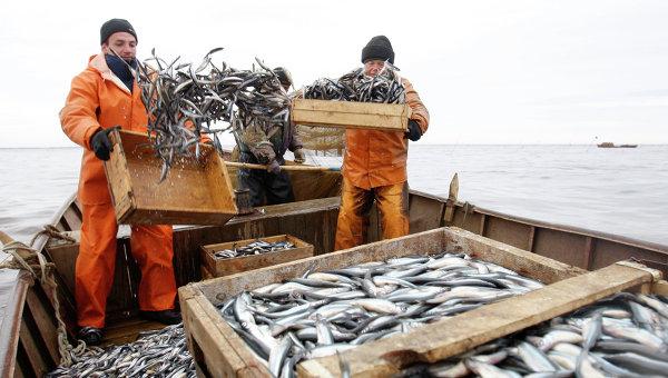 Лов рыбы. Архивное фото