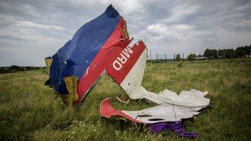 Обломки лайнера Boeing 777 Малайзийских авиалиний, потерпевшего крушение в районе города Шахтерск Донецкой области. Архивное фото