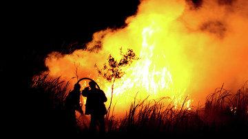 Пожары в Индонезии. Архивное фото