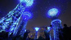 Cады у залива в Сингапуре подсвечены синим в день 70-летия ООН
