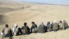 Сторонники правительственных войск в Афганистане. Архивное фото