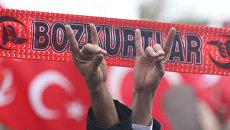 Сторонники ультранационалистического движения Серые волки во время митинга в Анкаре, Турция