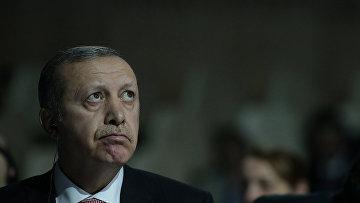 Президент Турции Реджеп Тайип Эрдоган на климатической конференции ООН в Париже