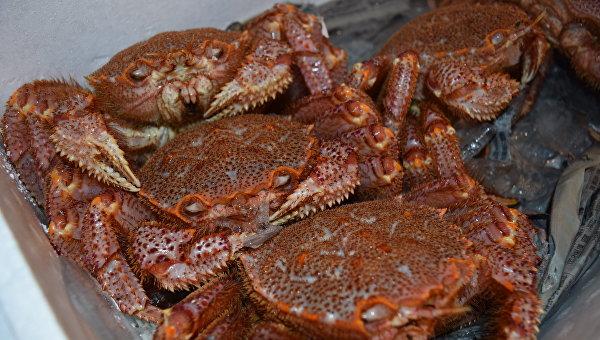 Морепродукты на рынке Цукидзи в Токио, Япония