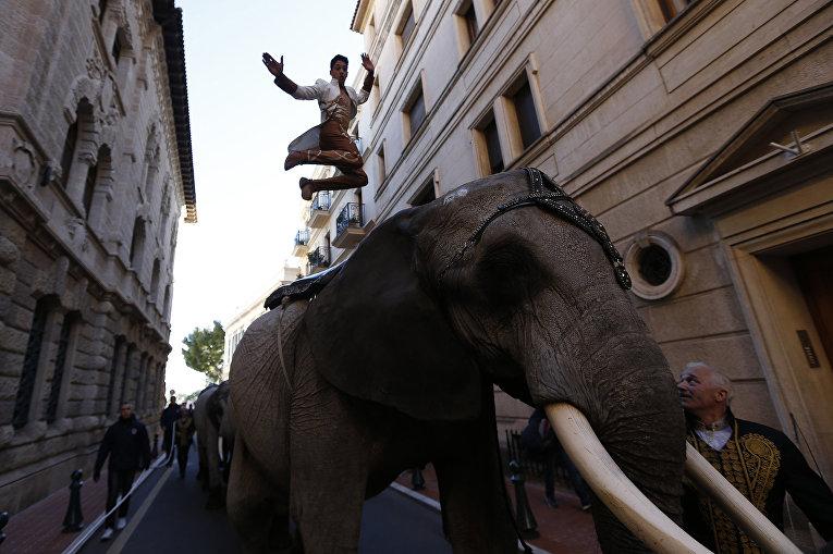 Участник Cassely family во время циркового шоу в Монако. Январь 2016