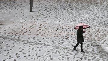 Снегопад в Японии, январь 2016