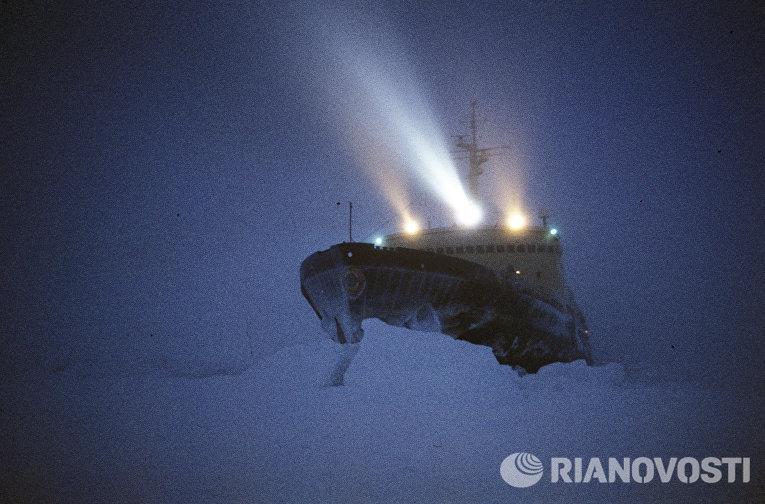 Операция по спасению научно-исследовательского судна Михаил Сомов, скованного льдами вблизи побережья Антарктиды у Берега Хобса