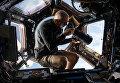 Астронавт NASA Скотт Келли фотографирует Землю с МКС