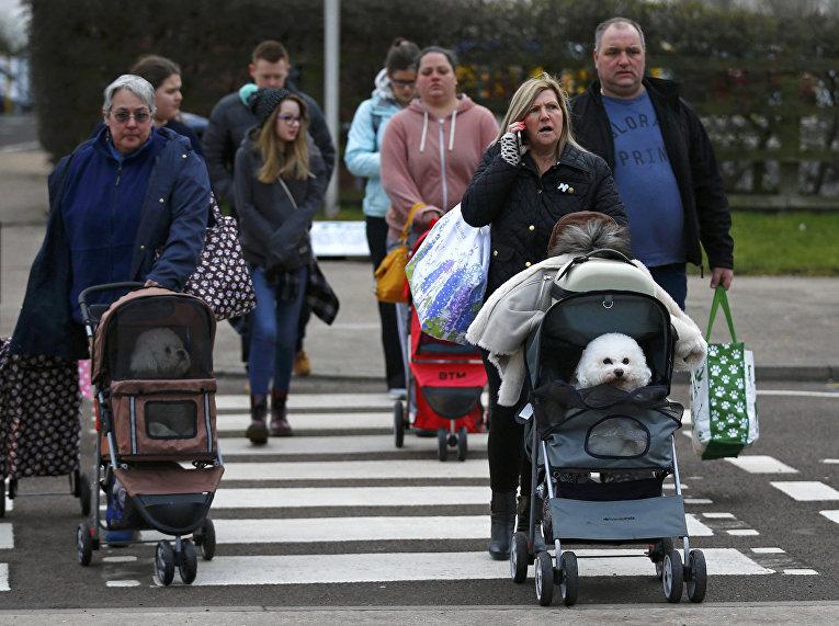 Посетители выставки Crufts Dog Show в Бирмингеме, Англия