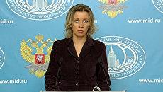 Вы это делаете за свой счет – Захарова напавшим на дипмиссии РФ радикалам