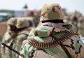 Бойцы отряда народного ополчения Соколы пустыни во время передислокации в районе сирийского города Пальмира