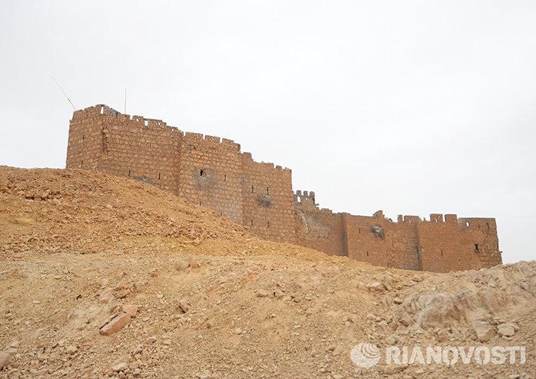 Освобожденная сирийской армией и отрядами народного ополчения Соколы пустыни цитадель Пальмира