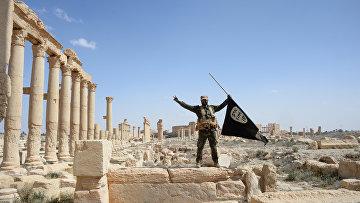 Боец отряда народного ополчения Соколы пустыни держит флаг запрещенной в РФ группировки ИГ, в исторической части Пальмиры. Архивное фото