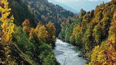 Река Белая в Кавказском заповеднике в Адыгее. Архив