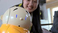 Робот-монах читал мантры и развлекал прихожан буддистского храма в Пекине