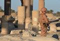 Российские военнослужащие охраняют территорию древней Пальмиры