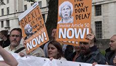 Митинги за и против Brexit в Лондоне едва не переросли в драку