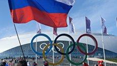 Болельщики с российским флагом в Олимпийском парке Сочи. Архивное фото